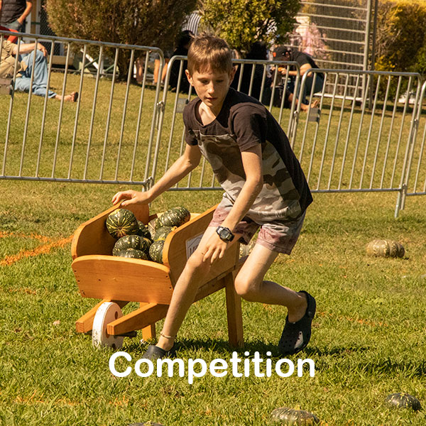 competition-2020.jpg