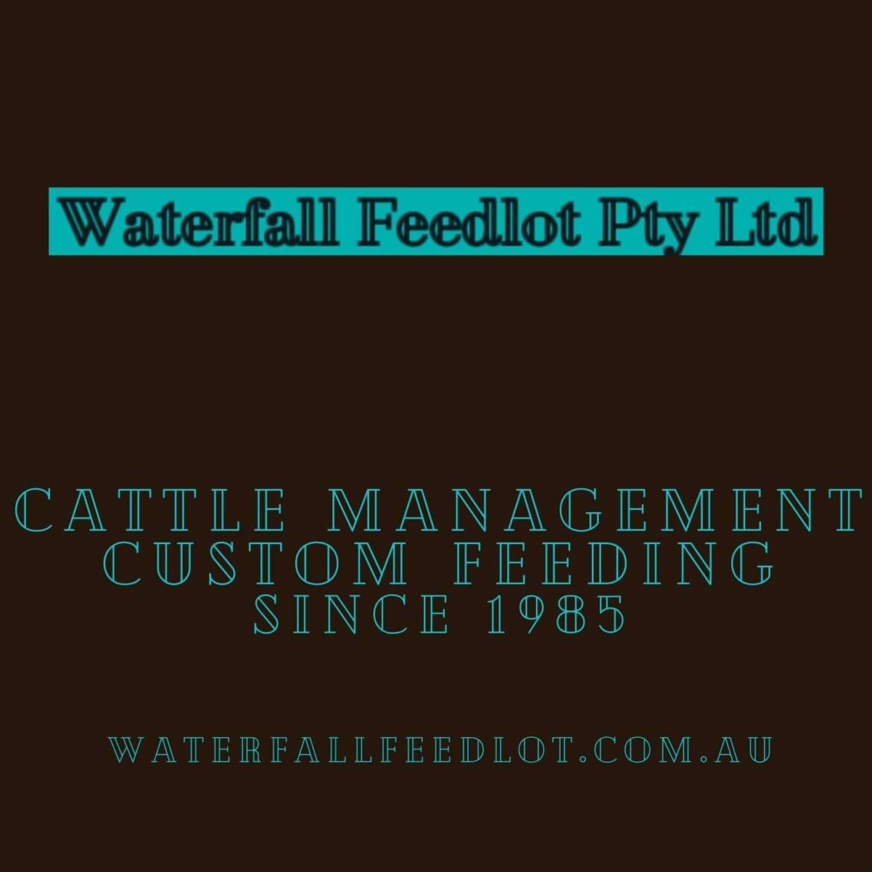 feedlot-logo.jpg
